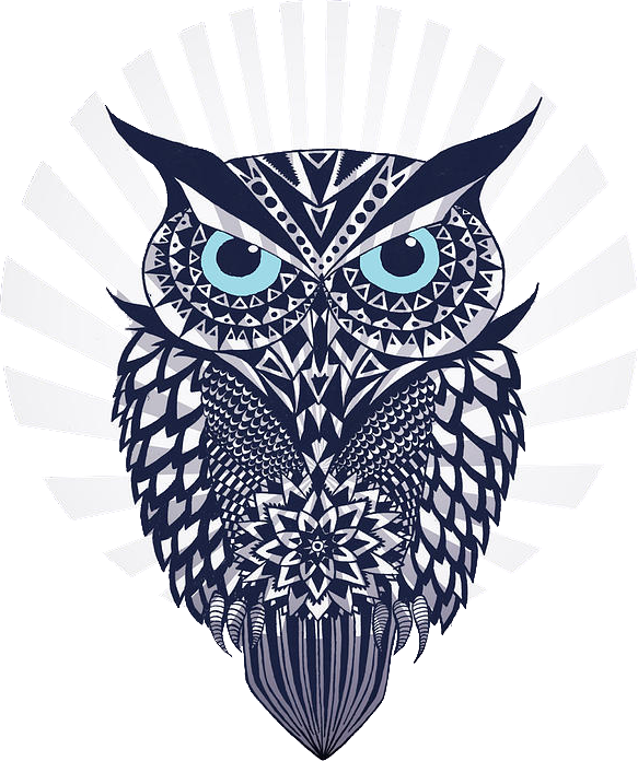 OWL: Mark Ashkenazi
